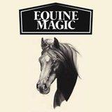 Manuka honing wondzalf Equine Magic speciaal ontwikkeld voor paarden. _
