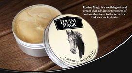 Manuka honing wondzalf Equine Magic speciaal ontwikkeld voor paarden. (pot 100 gram)