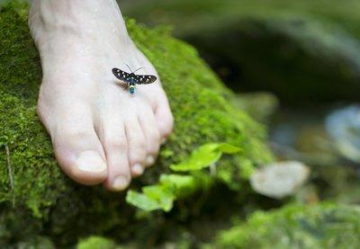 voetverzorging (pakket) met manuka-huidverzorging, afbeelding voet op mos